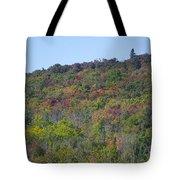 Dots Of Fall Colors Tote Bag