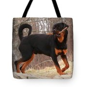 Rottie With A Tail And Stick Tote Bag