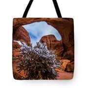 Double Arch Winter Tote Bag