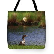 Double-crested Cormorant 2q Tote Bag
