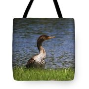 Double-crested Cormorant 4 Tote Bag