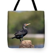 Double Crested Cormorant Tote Bag