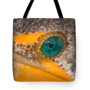 Double-crested Cormorant's Emerald Eye Tote Bag