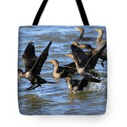 Double Crested Cormorants Tote Bag