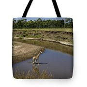 Double Crossing Tote Bag