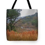 Double D Falls Tote Bag