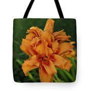 Double Day Orange Tote Bag