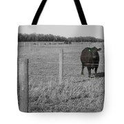 Double Post Tote Bag