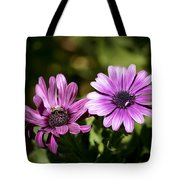 Double Purple African Daisy Tote Bag