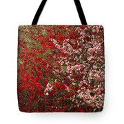 Double Quince Tote Bag