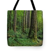 Douglas-fir Tote Bag