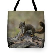 Douglas' Squirrel On The Rocks Tote Bag