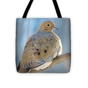 Dove In Evening Light Tote Bag