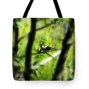 Dove In The Everglades  Tote Bag