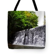 Dove Lake Waterfall Tote Bag