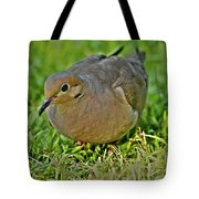 Dove With Hdr Tote Bag