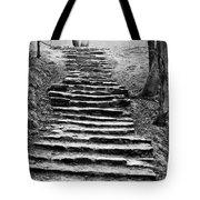 Dovedale Steps Tote Bag
