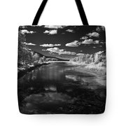 Dover Slough 2 Tote Bag