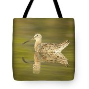 Dowitcher Reflection I Tote Bag