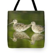 Dowitcher Reflections Tote Bag