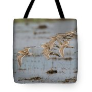 Dowitchers Tote Bag