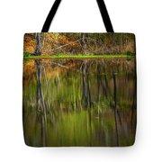 Down At Pecks Pond Tote Bag