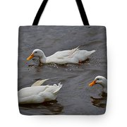 Down Covered Cruisers Tote Bag