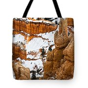 Down Into The Canyon Tote Bag
