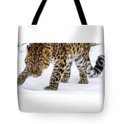 Down Low And Stealthy D4788 Tote Bag