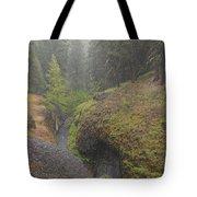 Down Pour At Boulder Cave Tote Bag