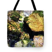 Down Stream Of Clearwater Falls Tote Bag