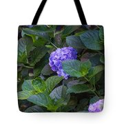 Down The Hill Tote Bag