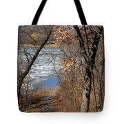 Down The Path Tote Bag