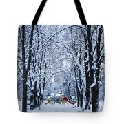 Down To The Park Tote Bag