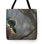Downey Woodpecker Tote Bag