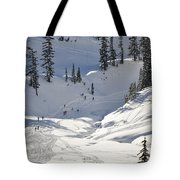 Downhill Skiers Tote Bag