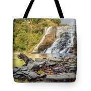 Downstream From Ithaca Falls Tote Bag