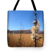 Downtown Meadow Architecture Tote Bag
