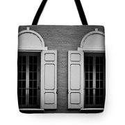 Downtown Windows Roanoke Virginia Tote Bag