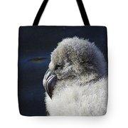 Downy - Baby Flamingo Tote Bag