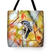 Downy Woodpecker In Autumn Forest Tote Bag