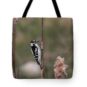 Downy Woodpecker On Cattails Tote Bag