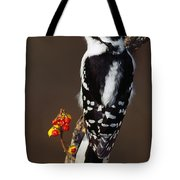 Downy Woodpecker On Tree Branch Tote Bag