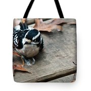 Downy Wooodpecker Picoides Pubscens Tote Bag