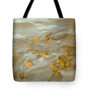 Dp Stone Impressions 15 Tote Bag