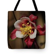 That Red Flower Thing  Tote Bag