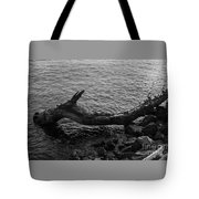 Dragon Taking A Drink Tote Bag
