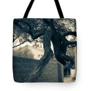 Dragon Tree Tote Bag