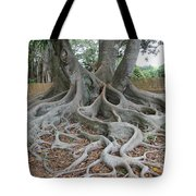 Dragonfeet Tote Bag