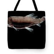 Dragonfish Tote Bag